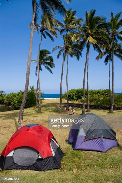 Camping ground, Whittington Beach Park, Ka'u.