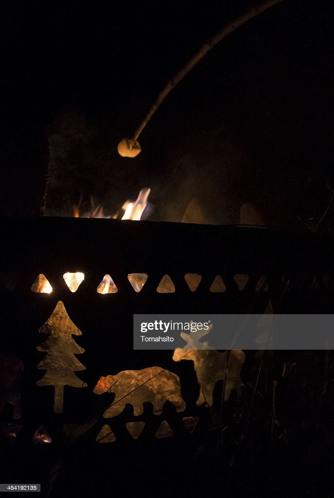 Camping in the woods : Stock Photo