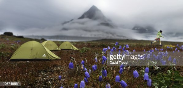 Camping landscape in South Greenland : Stock Photo
