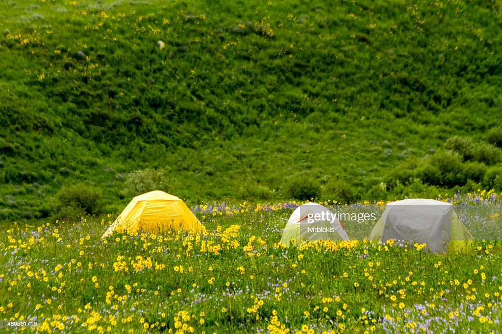 Camping Outdoors in the Mountains of Colorado : Stock Photo