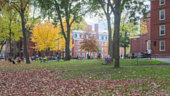 Blurred background of Harvard Yard on a beautiful Fall day in Cambridge, MA, USA.