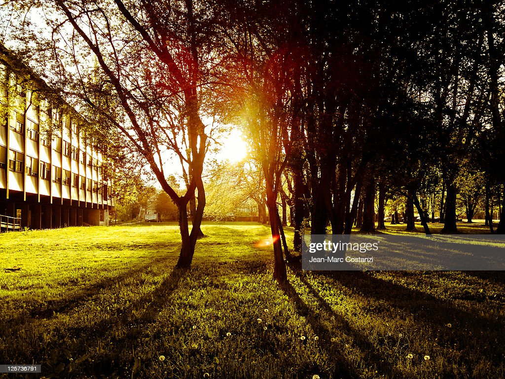Campus in morning : Stock Photo