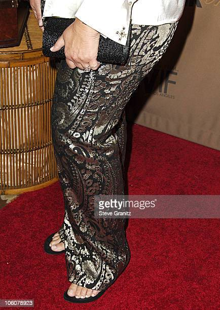 Camryn Manheim during 2006 Women In Film Crystal Lucy Awards Arrivals at Century Plaza Hotel in Century City California United States