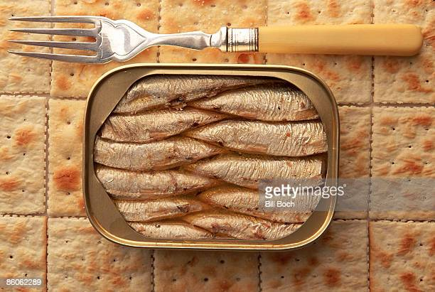 Can of sardines on crackers