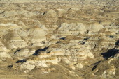 Canada Alberta Badlands Dinosaur Provincial Park near Brooks UNESCO World Heritage Site one of the most important fossil beds in the world much of...