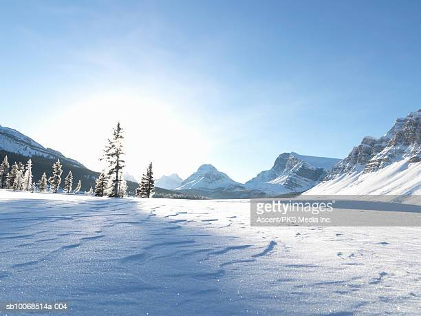 Canada, Alberta, Banff National Park, Patterns in snow and frost on trees at frozen Bow Lake