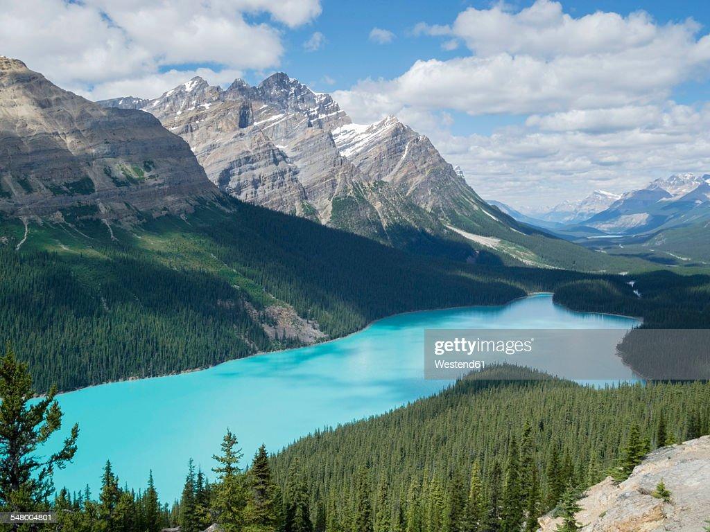 Canada, Alberta, Banff National Park, Peyto Lake