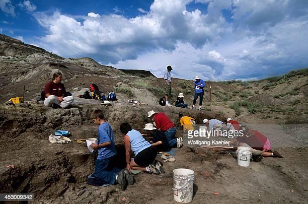 Canada Alberta Drumheller Royal Tyrrell Museum Tourists On Dinosaur Dig