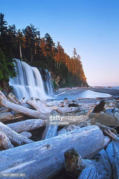 Tsusiat Falls Stock Photos And Pictures | Getty Images