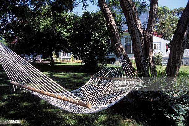 Canada British Columbia Spring Island Beddis House Bed And Breakfast Empty Hammock In Backyard