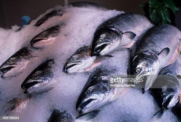 Canada British Columbia Vancouver Granville Island Public Market Fresh Salmon