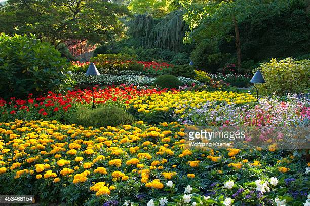 Canada British Columbia Vancouver Island Near Victoria Butchart Gardens Sunken Garden Flowers
