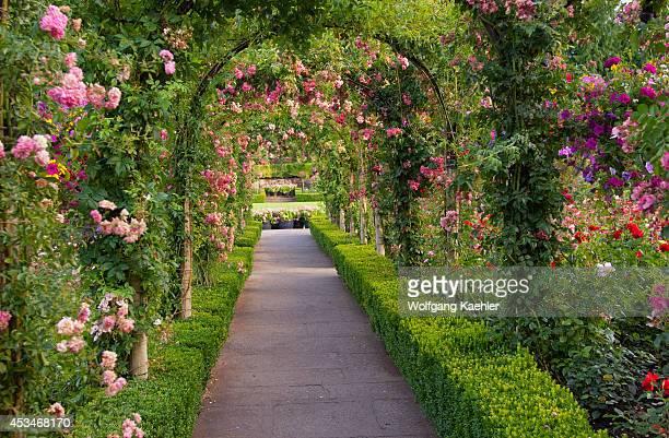 Canada British Columbia Vancouver Island Near Victoria Butchart Gardens Rose Garden Trellis