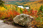 Rock and small lake in a forest of pines, birches and maples in autumn in Quebec