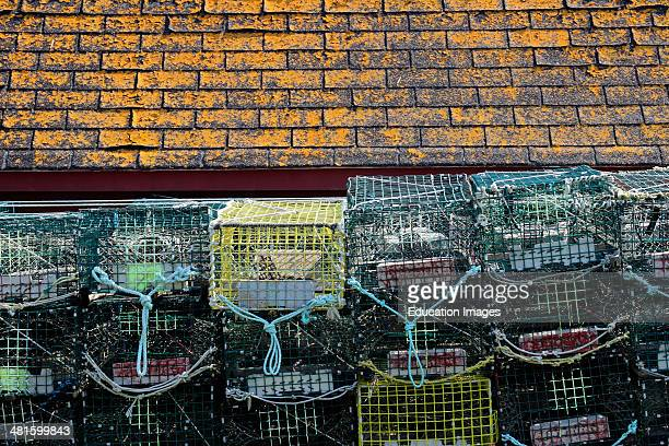 Canada Nova Scotia Atlantic Maritime Provinces Lunenburg Blue Rocks lobster traps dock lichen