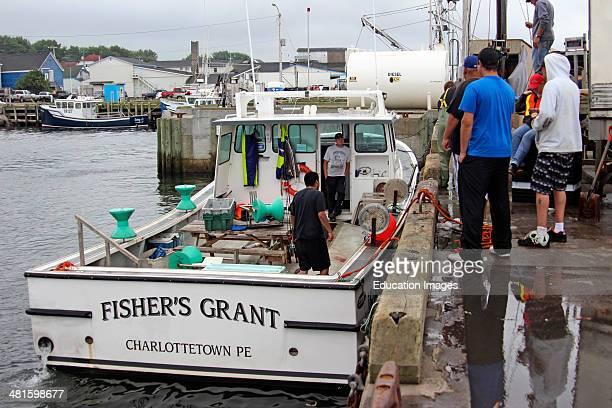 Canada Nova Scotia Cape Breton Cheticamp harbor fishing boats unload at dock