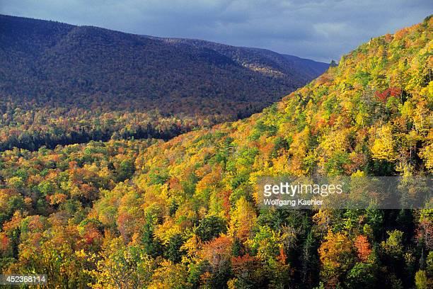 Canada Nova Scotia Cape Breton Highlands National Park Autumn Scene