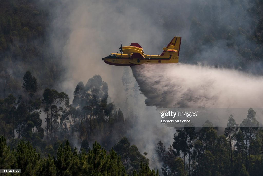 Feu au Portugal 2017 - CL-415 Canadair-cl215-firefighting-amphibious-aircraft-drops-water-over-a-picture-id831298100