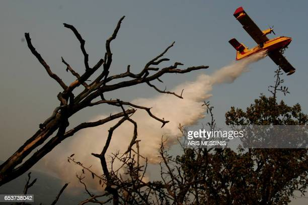 A Canadair firefighting airplane sprays water over a fire in the village of Kyparissia on the Peloponnese peninsula 01 September 2007 Greece battled...