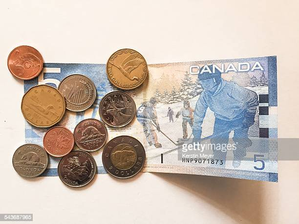 Canadian dollar with ice hockey and Canadian coins with animal themes