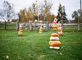 Canadian Flag Atop Pumpkins