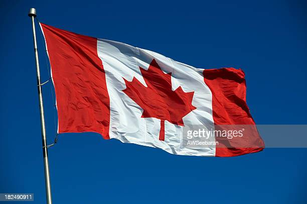Canadian flag flying in the blue sky