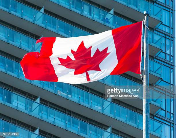 Canadian Flag In Front of Skyscraper On Windy Day