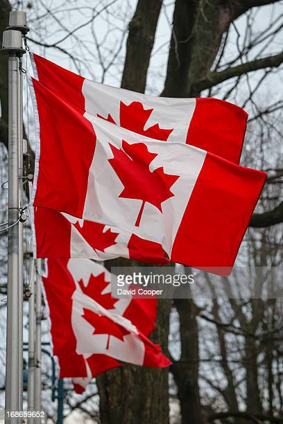 Canadian Flags line the pathway at Kew Gardens near the Cenotaph