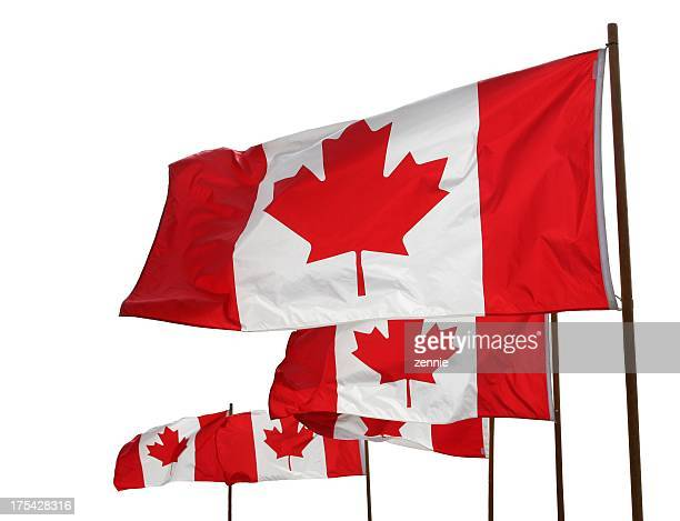 Canadian Flags Waving Proudly