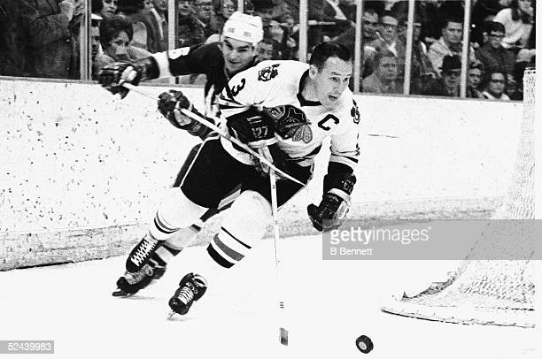 Canadian hockey player Pierre Pilote of the Chicago Black Hawks skates around the back of the net with the puck followed closely by an unidentified...