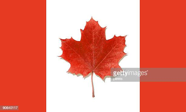 Canadian maple flag
