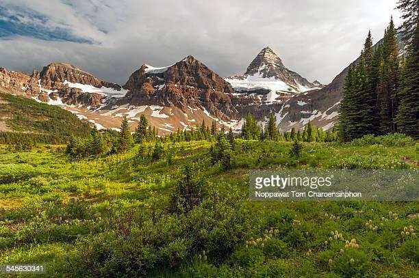 Canadian Matterhorn Mount Assiniboine