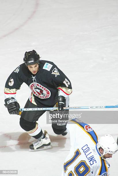 Canadian professional hockey player Daniel Carcillo of the WilkesBarre/Scranton Penguins on the ice during a game against the Bridgeport Sound Tigers...
