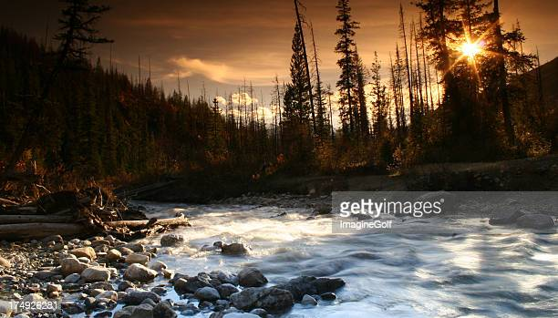 Canadian Rockies Wilderness Scene