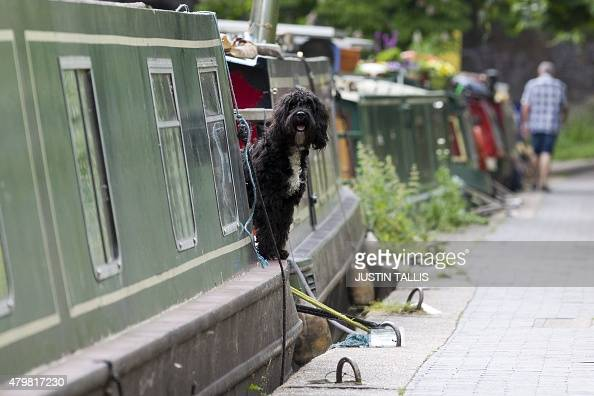 LEARY Canal boats are moored up on the Regents Canal in London on May 28 2015 Rocketing housing costs in Britain's capital have fuelled a surge in...