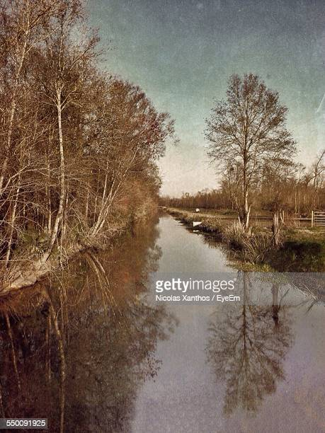 Canal By Trees Against Sky