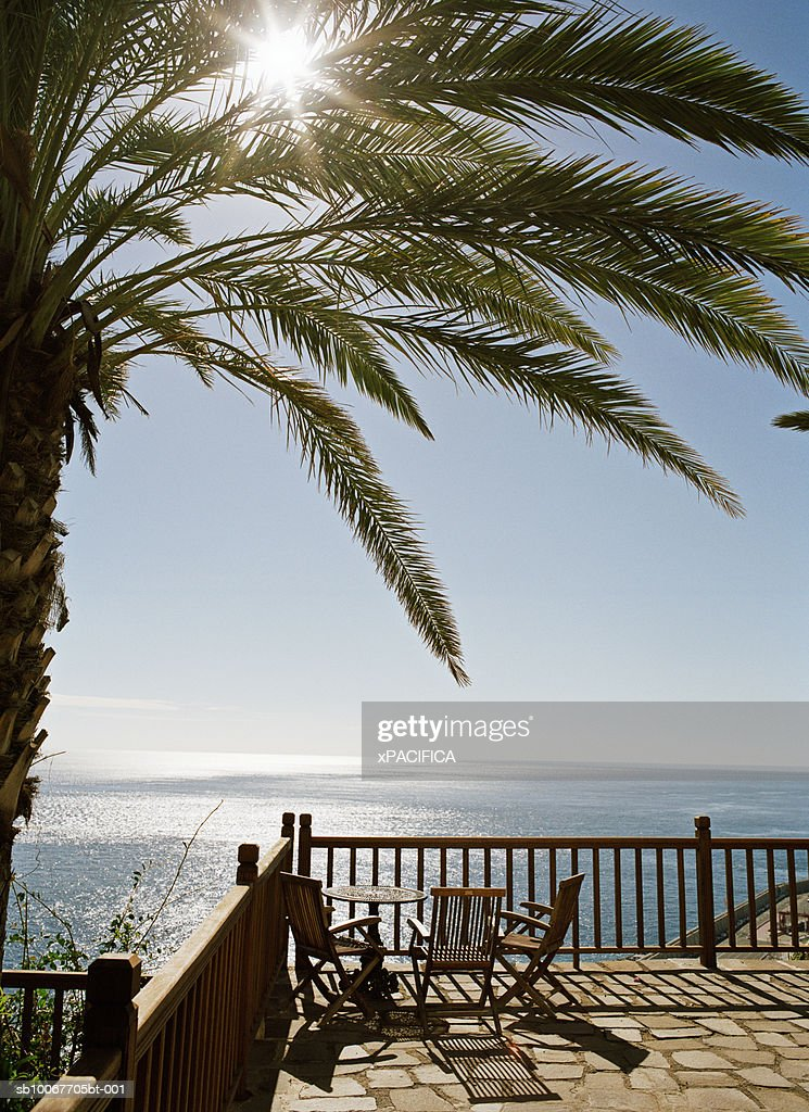 Canary Islands, La Gomera, palm tree over balcony by ocean