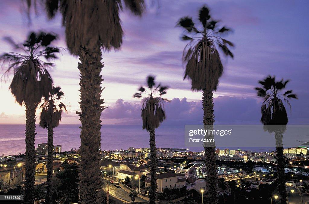 Canary Islands, Tenerife, Playa de las Americas, elevated view
