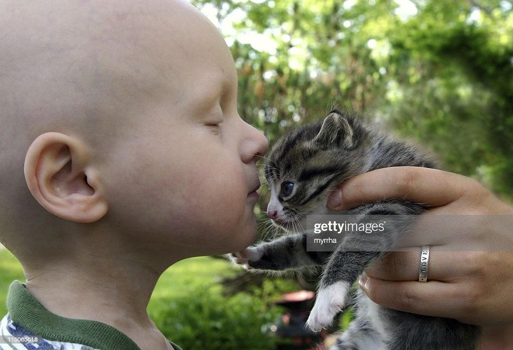 Cancer Kids; kisses for kitten