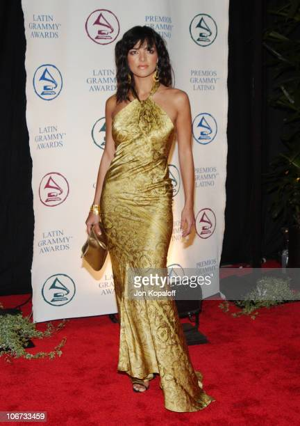 Candela Ferro during 2004 Latin Recording Academy Person of the Year Tribute Event Honoring Carlos Santana Arrivals at The Century Plaza Hotel in...