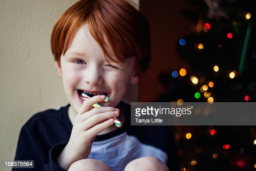 Candy Cane Munch : Stock Photo