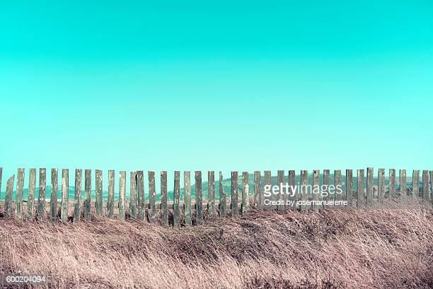 Candy fences