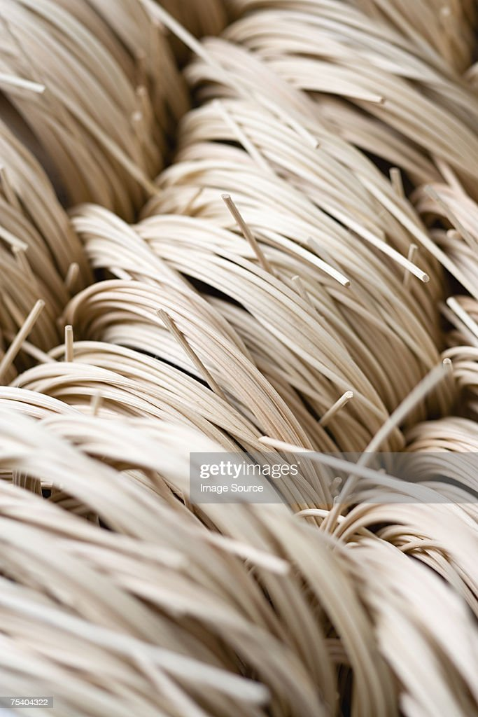 Cane for basketry