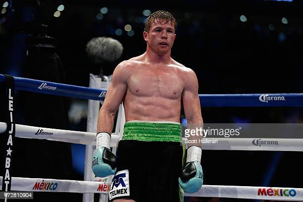 Canelo Alvarez of Mexico waits in his corner after knocking James Kirkland down in the third round during their super welterweight bout at Minute...