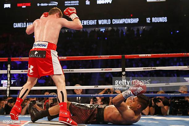 Canelo Alvarez throws a knockout punch at Amir Khan during the WBC middleweight title fight at TMobile Arena on May 7 2016 in Las Vegas Nevada