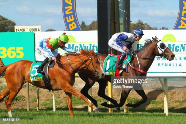 Canelo ridden by Thomas Stockdale wins the Royal Hotel Benalla BM64 Handicap on October 31 2017 in Benalla Australia