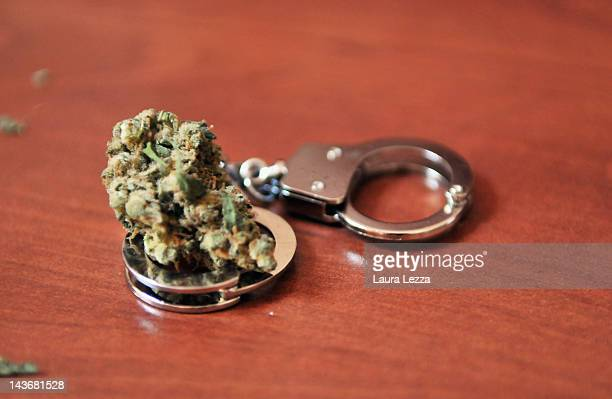 Cannabis displayed after the favourable vote of the bill proposed by Tuscany Region for allowing cannabis to become a legally prescribed drug for...