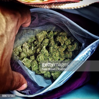 Cannabis In Plastic Bag