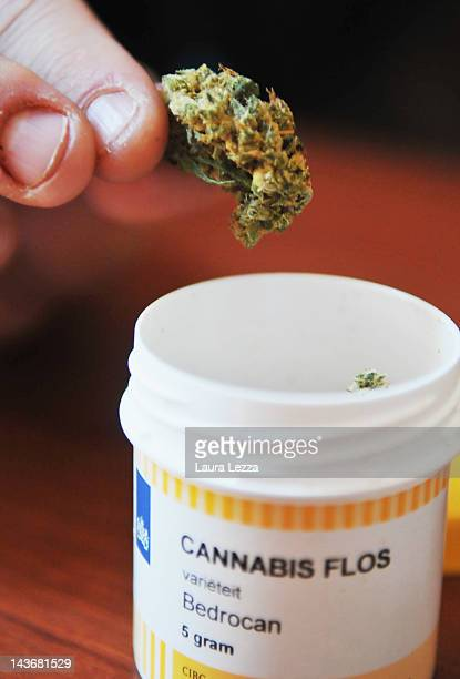 Cannabis is held by a patient after the favourable vote of the bill proposed by Tuscany Region for allowing cannabis to become a legally prescribed...
