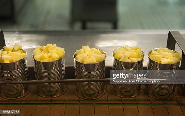 Canned pineapple processing line